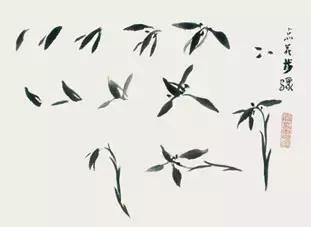 兰花的画法教程