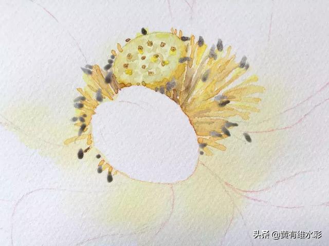 11个绘画步骤,教你画一朵好看的水彩荷花