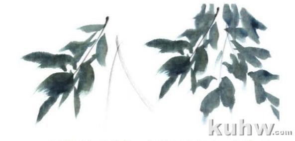 紫藤花头、叶子以及创作的画法