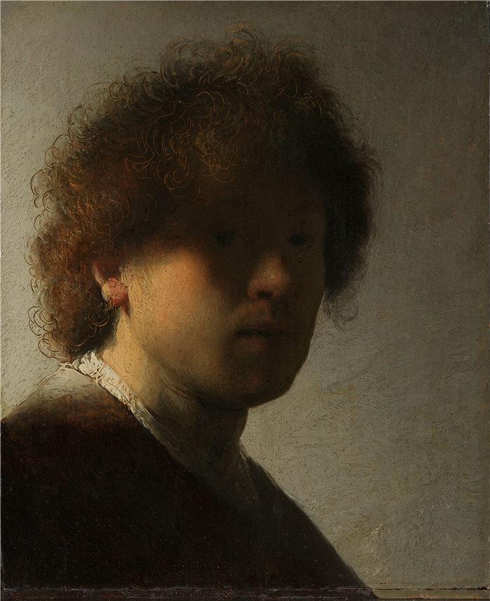 伦勃朗·范·瑞恩  (Rembrandt van Rijn,荷兰 ) 作品 - 自画像,伦勃朗·范·莱恩(约 1628 年)